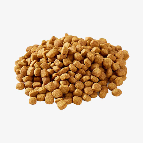Dog Dry Food Contract Manufacturing Malaysia